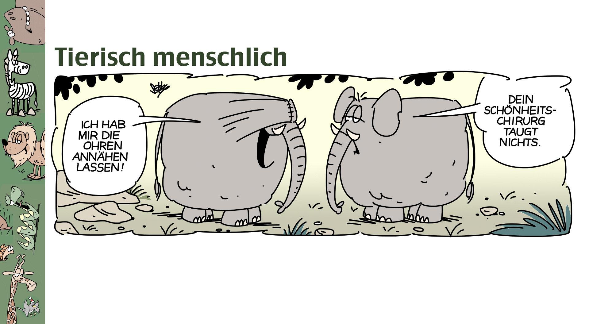 http://treworx.net/kunden/brandt-cartoons/cartoons.html