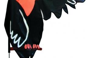 banner_crow_cmyk